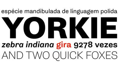 Rui Abreu Typography